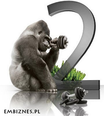 Gorilla-Glass-2